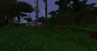 foresthope-photo2